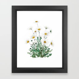 white Margaret daisy watercolor Framed Art Print