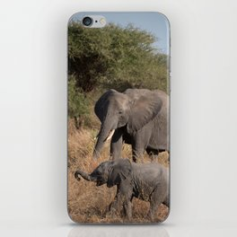 Elephant Mother and Young iPhone Skin