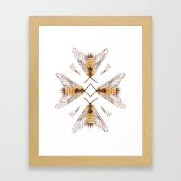 Moth Kaleidoscope  Framed Art Print