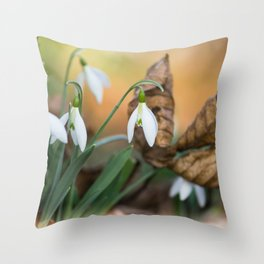 Opposites new and old in the garden Throw Pillow