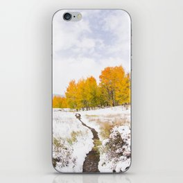 Fall Meets Winter iPhone Skin