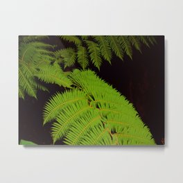 Light Lime Green Fern Leaf Metal Print