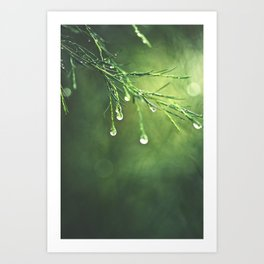 Relic of a Rainy Day Art Print