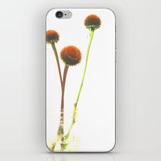 In the Simple Things iPhone & iPod Skin