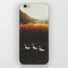 Walking geese iPhone Skin