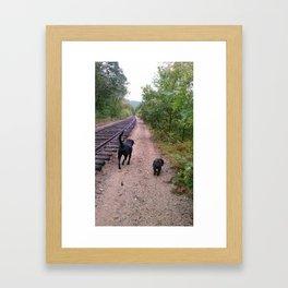 where the tracks lead Framed Art Print