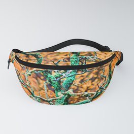 Rebirth Fanny Pack