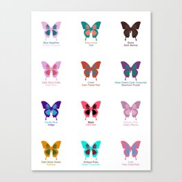 Butterflies 12 Canvas Print