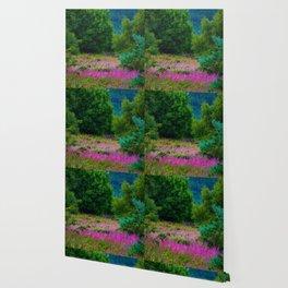Scottish Heather Wallpaper