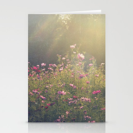 Cosmos in the Late Day Sun Stationery Cards