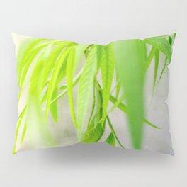 Nature photography green leaf II Pillow Sham