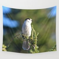 jay fleck Wall Tapestries featuring Gray Jay by Lena Photo Art