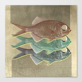 feeling selfish to sell fish Canvas Print