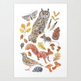 Autumn Wildlife Art Print