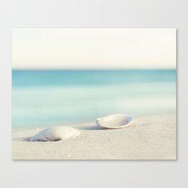 Seashell Beach Photography Art, Shell Coastal Ocean Photo, Seashore Sea Aqua Blue Print Canvas Print