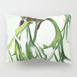 Staghorn Pillow Sham
