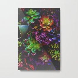 Treasure of Nature VI Metal Print