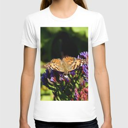 Painted Lady on Statice Blooms T-shirt