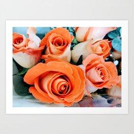 Peach Roses Art Print