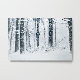 forever winter Metal Print