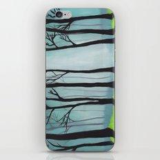 The Glen iPhone & iPod Skin