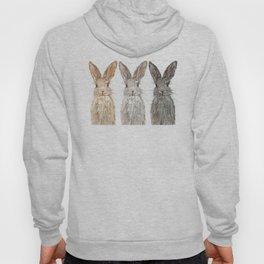 Triple Bunnies Hoody