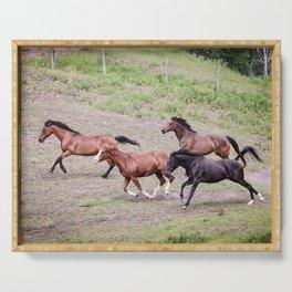 Running Herd Serving Tray