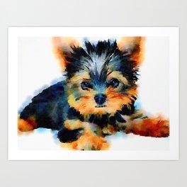 Yorki Pup Art Print