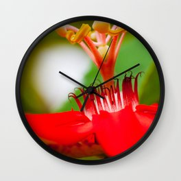 Macro Photography : Red Passiflora Flower Curls Wall Clock