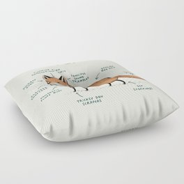 Anatomy of a Fox Floor Pillow