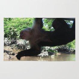 Monkey Business Rug