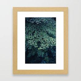 at cedar creek Framed Art Print