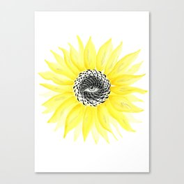 The Sunflower Eye Canvas Print