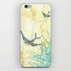 Birds of blue iPhone & iPod Skin