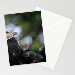 Sleight of Terra Stationery Cards