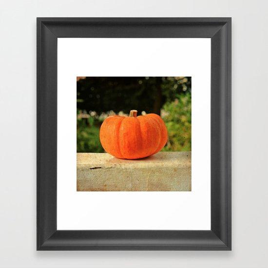 Pumpkin details Framed Art Print