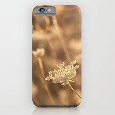 Sunflare Slim Case iPhone 6s