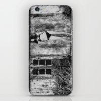 bikini iPhone & iPod Skins featuring Black Bikini. by davehare
