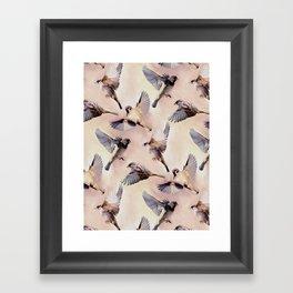 Sparrow Flight Framed Art Print