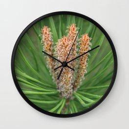 small pine tree Wall Clock