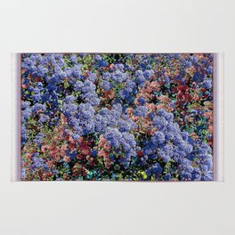 CEANOTHUS JULIA PHELPS ABSTRACT Rug