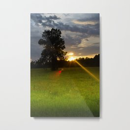 """Across The Field"" Metal Print"