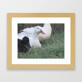 Perfect Spot Framed Art Print