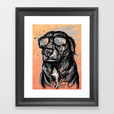 Only Cool Dogs Stare at the Sun Framed Art Print