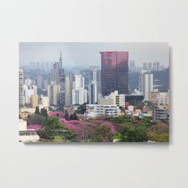 São Paulo I Metal Print