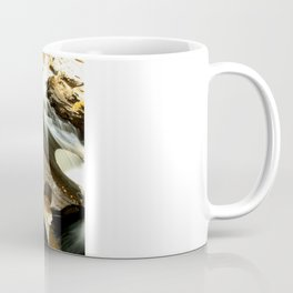 Fall from the Bridge Coffee Mug