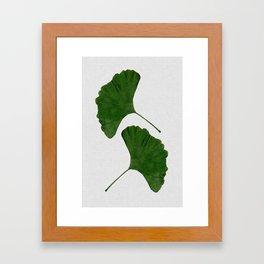 Ginkgo Leaf II Framed Art Print