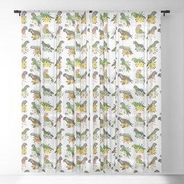 Poicephalus Parrots Sheer Curtain