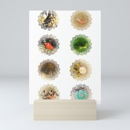 Haystack Rock Tidepool Creatures Mini Art Print