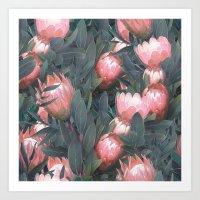 Proteas party Art Print